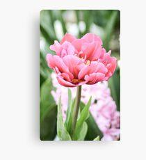 Tulip 1 Canvas Print