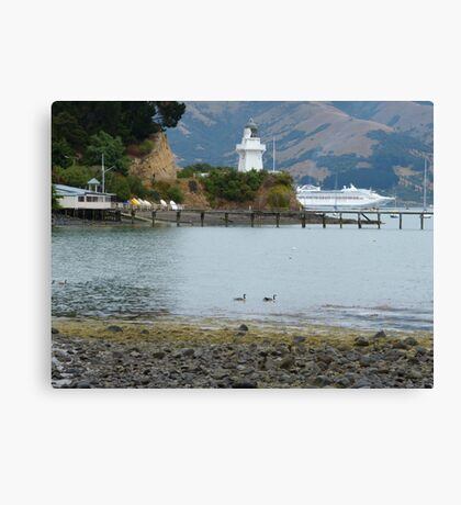 Akaroa for the day! Canvas Print