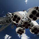 Ready to take off by Irina Chuckowree