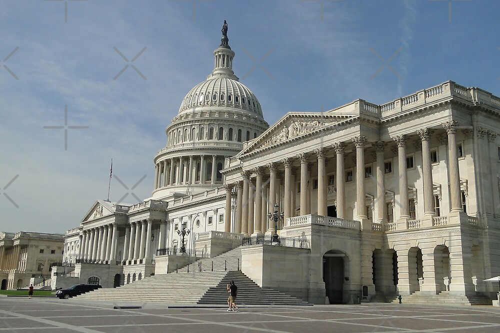 The Capitol Building by Barrie Woodward