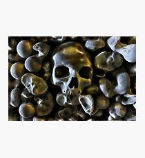 Good Bone Structure Photographic Print