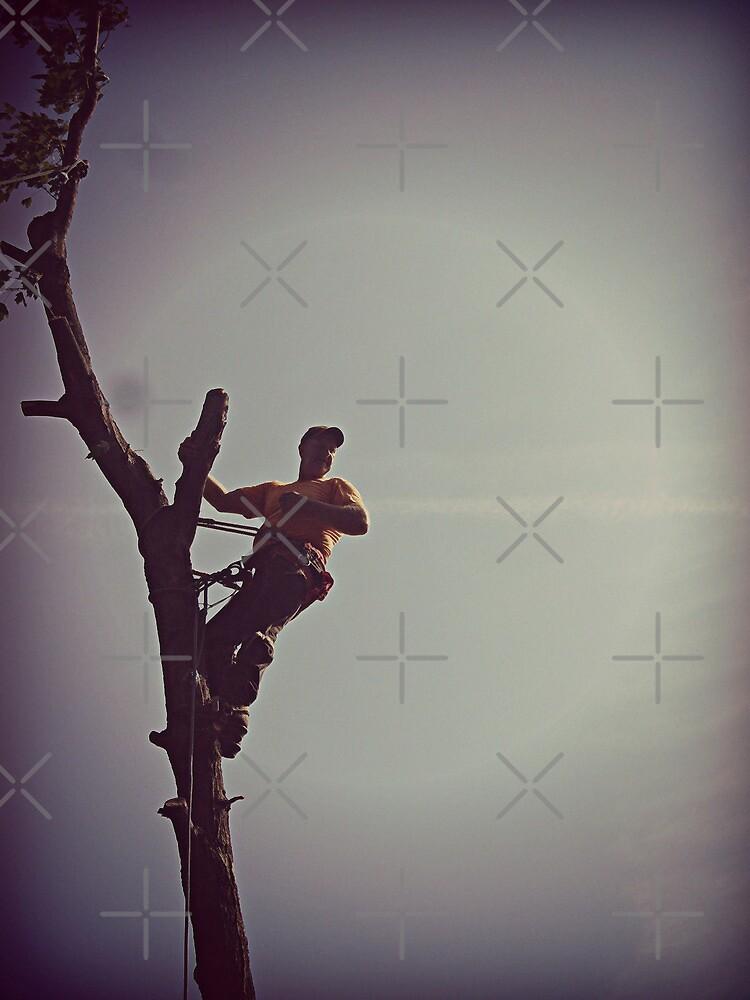 Tree Trimmer by FrankieCat
