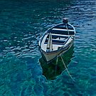 Blue boat by Freda Surgenor