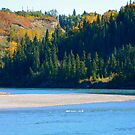 Autumn - North Saskatchewan River by Roxanne Persson