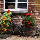 A bike with a second life by hanslittel