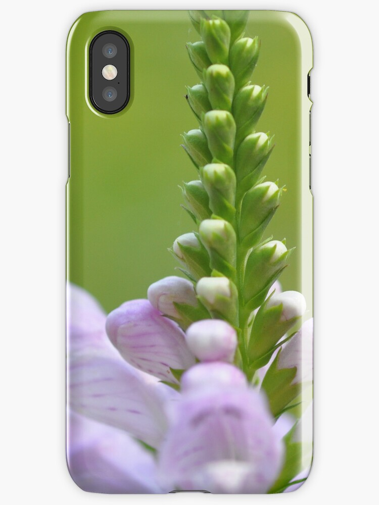 Summer Flowers iphone case by Elaine Manley