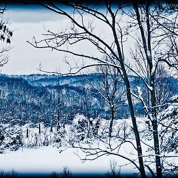 Winter Wonderland in Blue by ShirleyTinkham