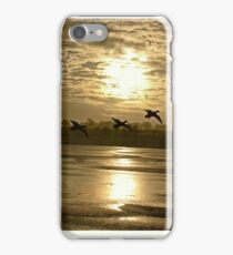 Sunset iPhone Cases iPhone Case/Skin