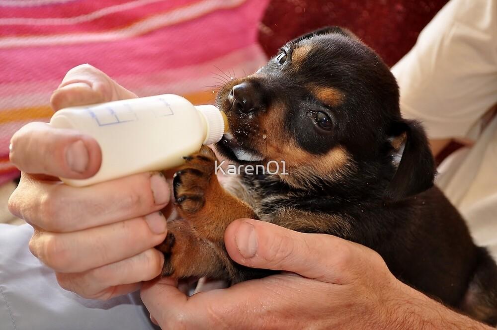 Milk-o-pup time... by Karen01