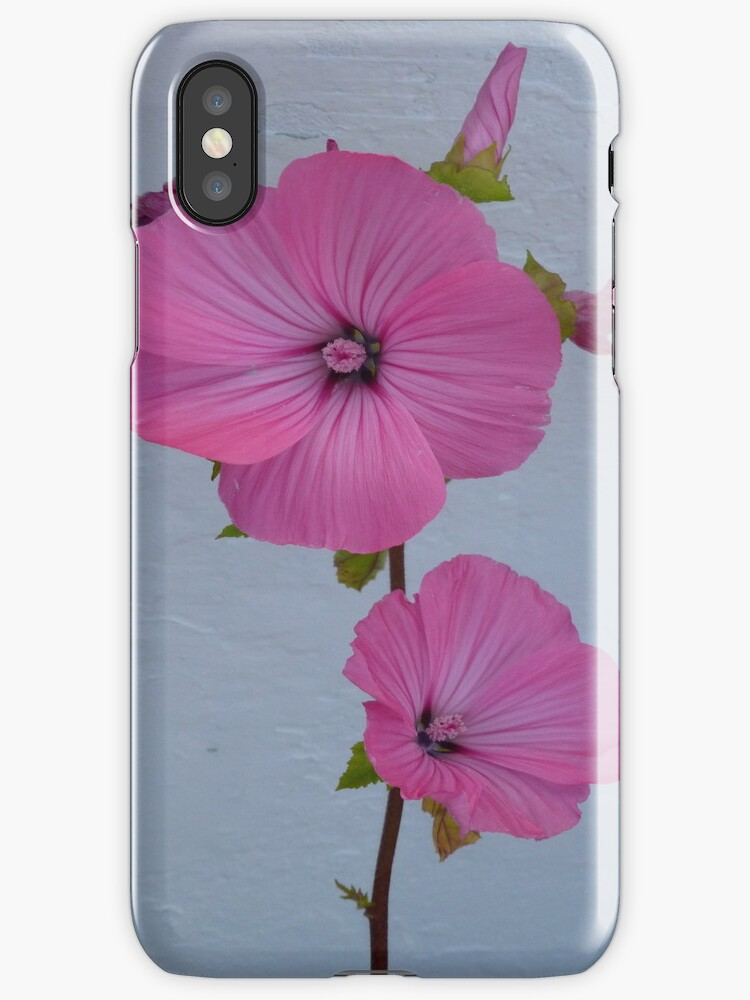 Felicity iPhone Case by Fara
