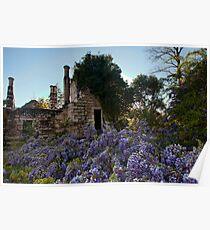 Eurama Ruins - Faulconbridge NSW Poster