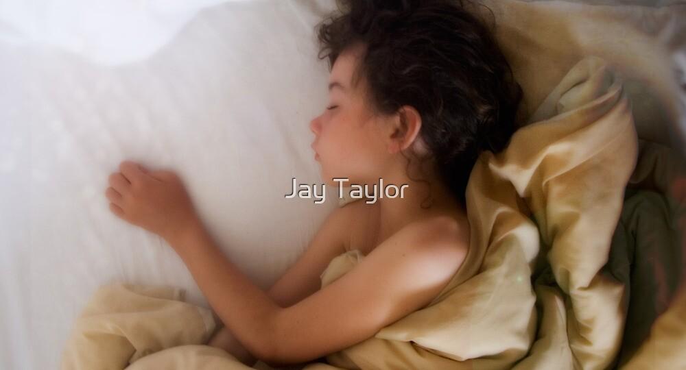 Beautiful Dreamer by Jay Taylor