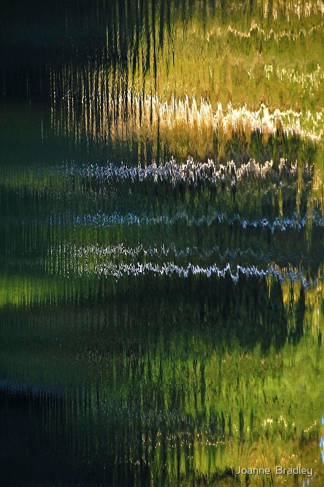 Vibration by Joanne  Bradley