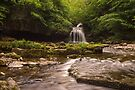 Dales Waterfall (viewed 102 times) by Cliff Williams