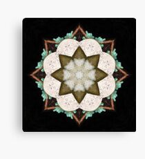 Natural Abstract Symmetry Canvas Print
