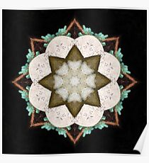 Natural Abstract Symmetry Poster