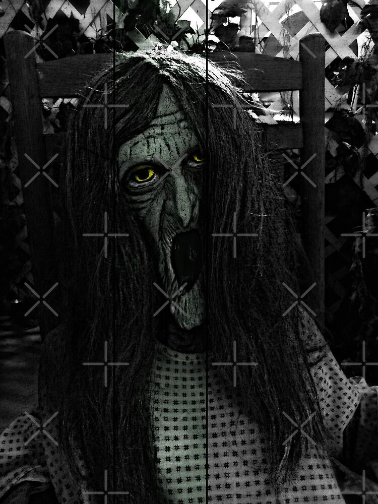 Witch by Scott Mitchell