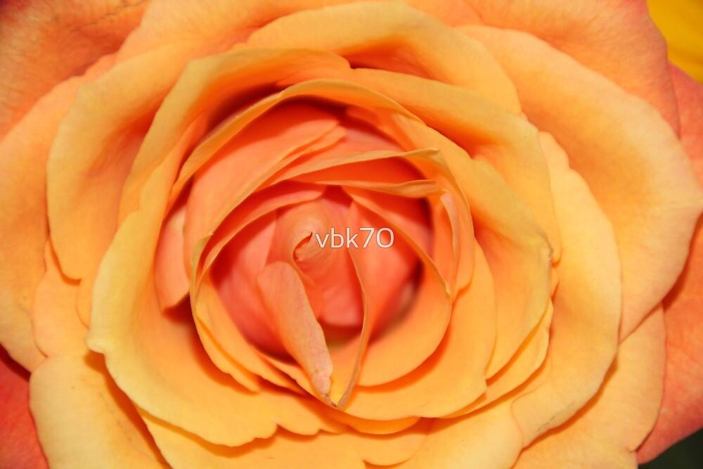 Petals by vbk70
