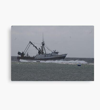 Into Safe Harbor Canvas Print