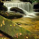 Lower Eastatoe Falls by Laura  Knight