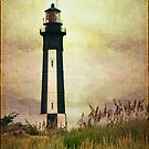 The Lighthouse by Barbara Manis