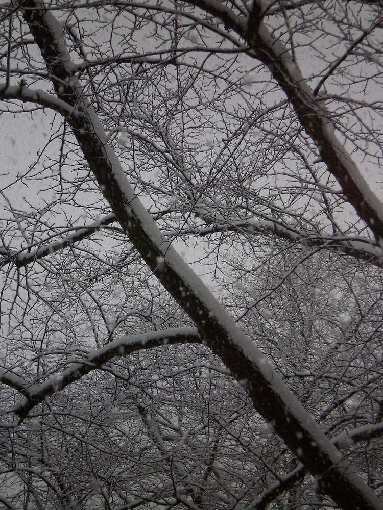 Snow by Happiness         Desiree