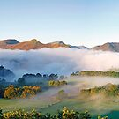 Morning mist on Derwentwater by Martin Lawrence