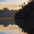 Cocha Salvador at sunrise, Parque Nacional del Manu, Peru by Erik Schlogl