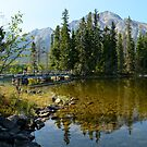Pyramid Lake by Roxanne Persson
