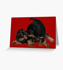 Rottweiler Puppies Playing Vector Isolated Greeting Card