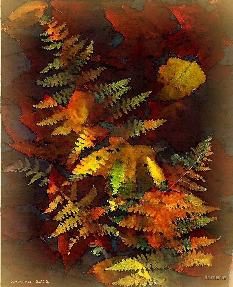 Fronds and Fringe... by linmarie