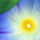 My Blue Heaven by milkayphoto