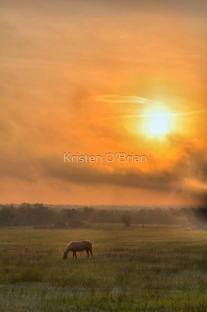 Good Morning by Kristen O'Brian