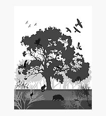 Support Native Animal Rescue Photographic Print