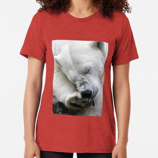 Itch Tri-blend T-Shirt