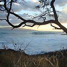 Hawaiian Sunset by LoveJess