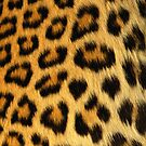 leopard iphone case by jon  daly