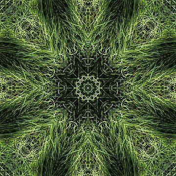 Mandala 12 by MiekeKupers