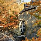 Sable River Mill in Autumn 2 by Debbie  Roberts