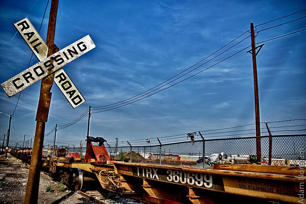 The Crossing of TTRX 360699 by Adam Northam
