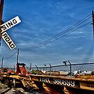 The Crossing of TTRX 360699 by anorth7