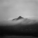 Mt Pollinger Flinders Island by Andrew  Makowiecki