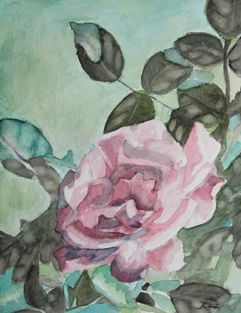 Afternoon Rose by Mark Sherman