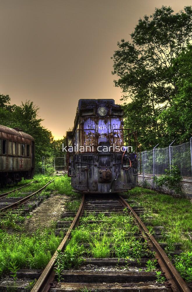 Abandoned Train by kailani carlson