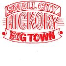 Small City Big Town Hickory NC by slmike82