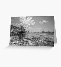 Fishing at Fort Montagu in Nassau, The Bahamas Greeting Card