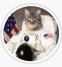 ASTRO CAT Sticker