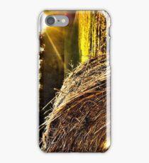 Bale iPhone Case/Skin