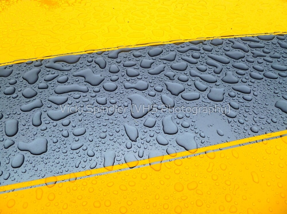 HDR Raindrops by Vicki Spindler (VHS Photography)