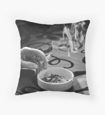 Lifecycle Throw Pillow